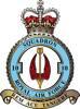 10 Squadron RAF Badge