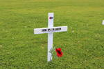 Fields of Remembrance Poppy, taken 15/09/2016. 100 years after his death outside Auckland War Memorial Museum