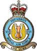 15 Squadron RAF Badge.