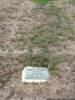 Plot of Errol BLAIR Photographed 24 February 2015 Ruru Lawn Cemetery, Christchurch, New Zealand