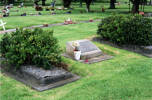 Grave, Purewa Cemetery, Auckland (photo P. Baker 2011) - This image may be subject to copyright