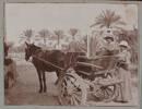 "Unknown, photographer (1915-1916). ""Sand cart. Sis. Abbott & Williams"". [Agnes (Peggy) Williams photograph album]. Auckland War Memorial Museum - Tāmaki Paenga Hira PH-2017-2-2-p14-2. No known copyright restrictions."