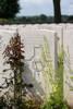 Headstone of Rifleman Arthur Gilbert Avery (24/675). Dernancourt Communal Cemetery Extension, France. New Zealand War Graves Trust (FRFB5572). CC BY-NC-ND 4.0.