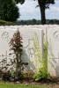 Headstone of Rifleman Arthur Gilbert Avery (24/675). Dernancourt Communal Cemetery Extension, France. New Zealand War Graves Trust  (FRFB5573). CC BY-NC-ND 4.0.