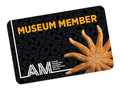 Get even more from your Museum